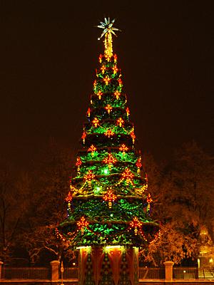А в твоем городе какая елка?