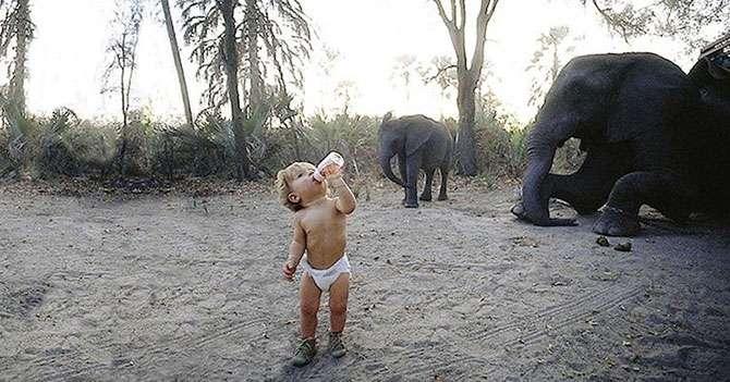 Девочка Типпи и африканские дикие животные