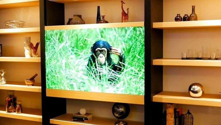 Panasonic разработала прозрачный телевизор